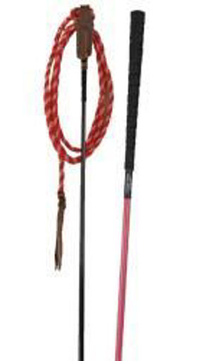Picture of NH TS Professional Training Stick with String